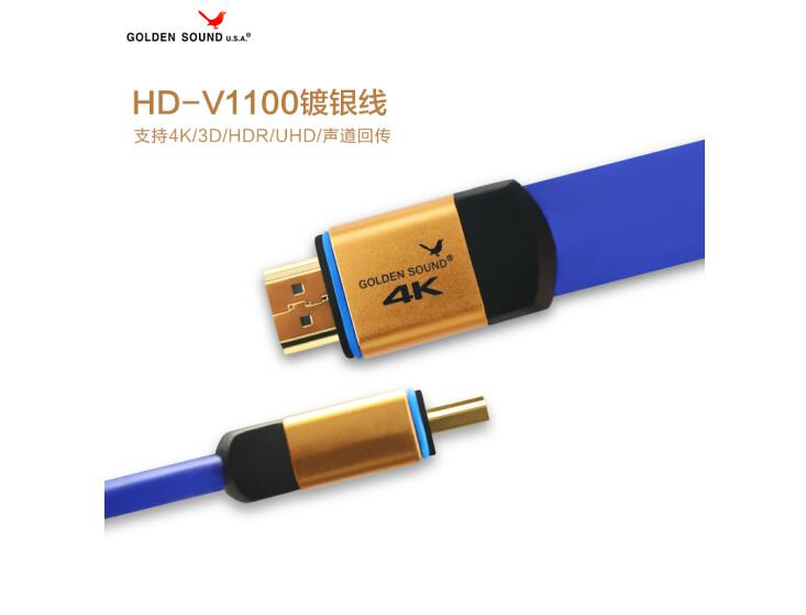 HD-V1100